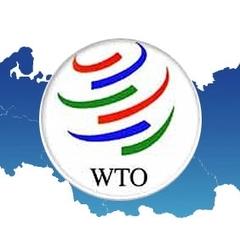 СОТ оприлюднила текст масштабного позову РФ проти України