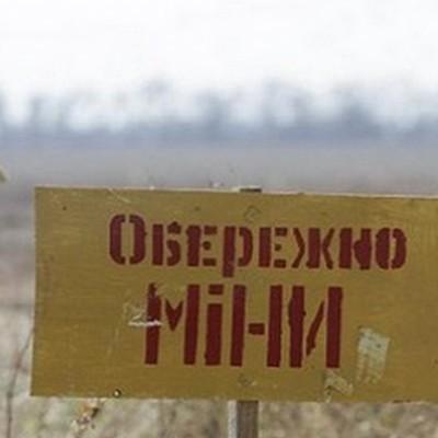 Австрія виділить 1 млн євро на розмінування Донбасу