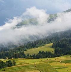 Літо в Карпатах: топ 5 мальовничих місць, які варто відвідати (фото)