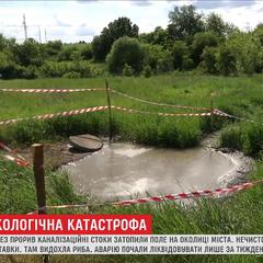 Прорив каналізації на Харківщині: нечистоти забруднили ставки та поля (відео)