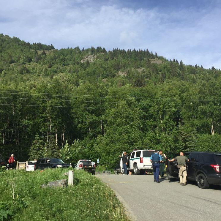 На Алясці ведмідь загриз 16-річного учасника масового забігу
