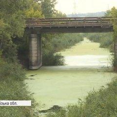 У водоймах Запоріжжя знайдено бактерію холери (відео)