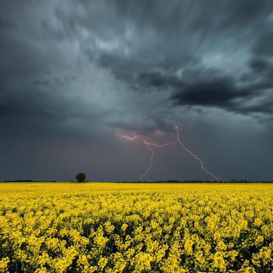 Українців попереджають про грози та сильний вітер