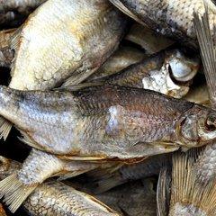 В торговій мережі Сільпо знайшли рибу заражену ботулізмом