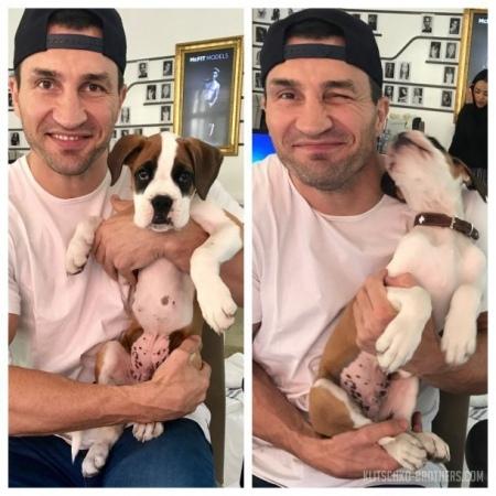 Боксер Володимир Кличко зворушив мережу фото зі своїм новим другом (фото)