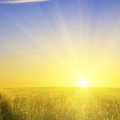 Якою буде погода в Україні найближчими днями