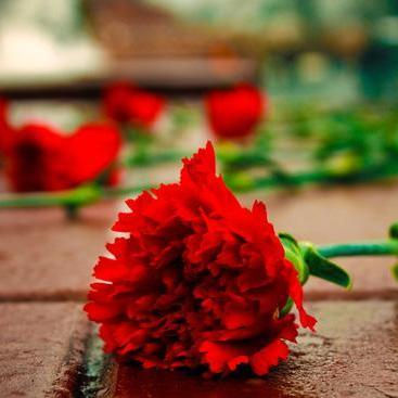 У Москві арештували чоловіка за покладання квітів