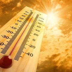 Спека наступає: як правильно харчуватись на роботі у ці дні