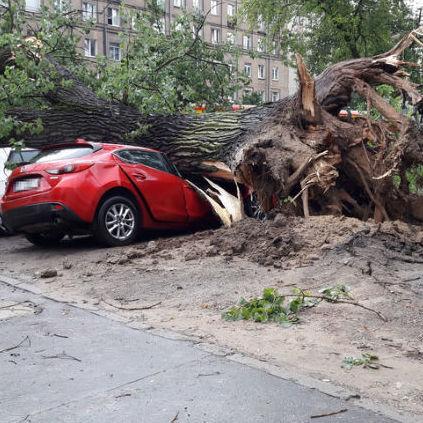 Потужна стихія «наробила біди» у Польщі (фото, відео)