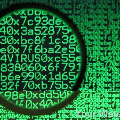 Поліція отримала понад 2 тис. повідомлень про інфікування комп'ютерних мереж вірусом-шифрувальником