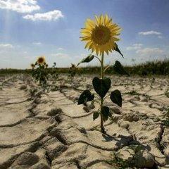 Катастрофічна нестача води на Кримському півострові: Путін готує ультиматум Україні