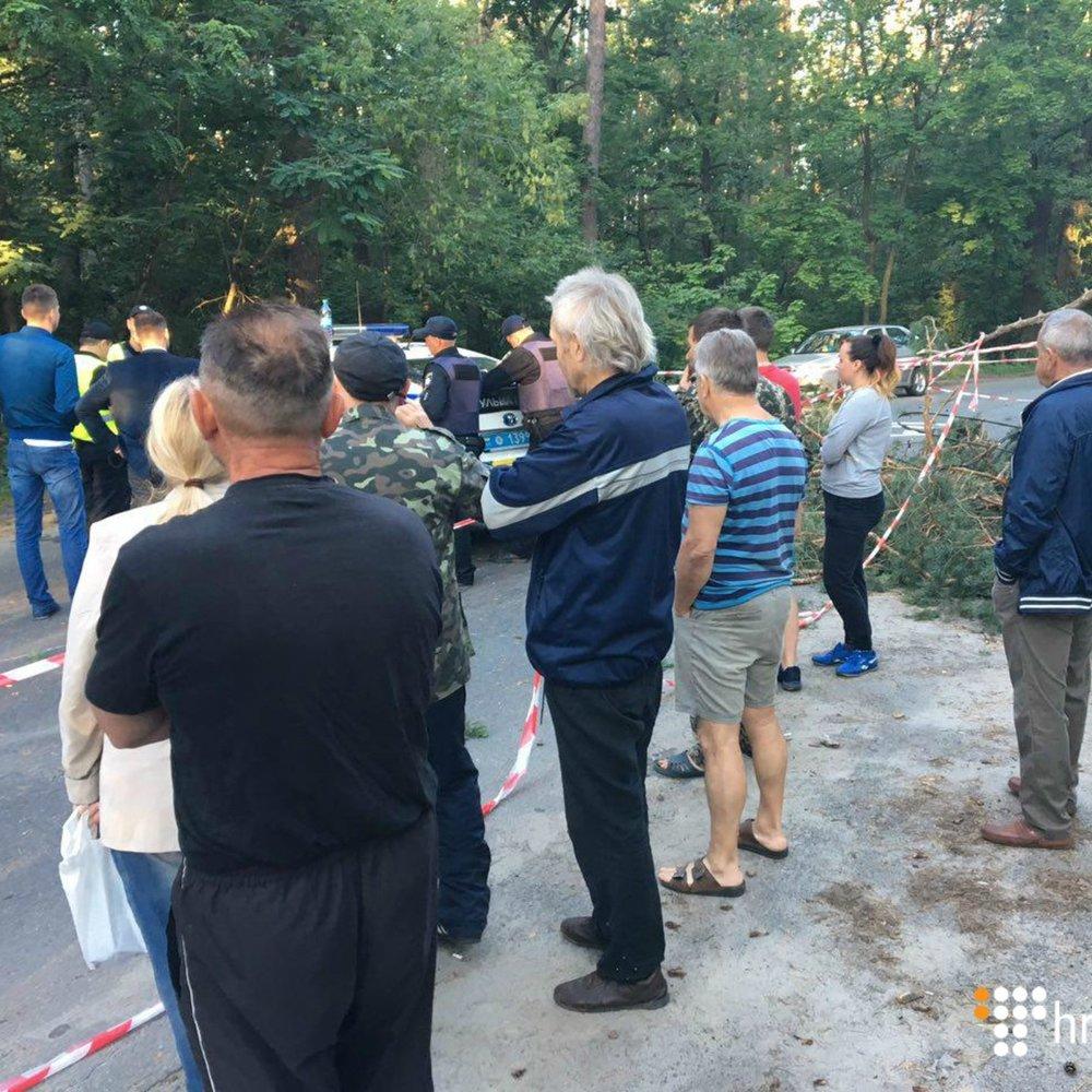 На Київщині через рейдерську вирубку лісу сталась сутичка із стріляниною (фото)
