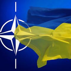НАТО зробило офіційне відео про Україну, яке починається з мітингу Партії регіонів (відео)