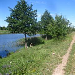 На Житомирщині місцеві мешканці не дозволили стороннім особам рибалити та застосували зброю