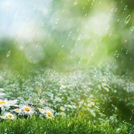 В Україні сьогодні місцями пройдуть дощі, на півдні до +31° (карта)
