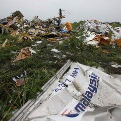 Малайзія сподівається, що дізнається імена винних у катастрофі до кінця року