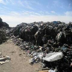 40 тонн львівського сміття знову виявилося на Київщині (фото)