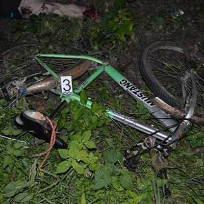 У Вінницькій області загинув велосипедист: водій мікроавтобуса не побачив його у темряві (фото)