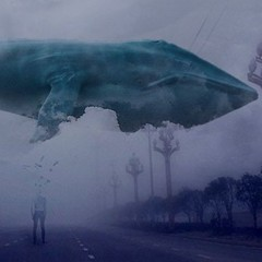 В Росії засудили адміністратора групи «Синій кит»