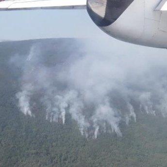 Українські рятувальники допомагають Чорногорії гасити масштабні лісові пожежі (фото, відео)