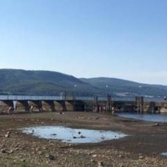 Італія потерпає від спеки, у Римі можуть обмежити водопостачання до 8 годин