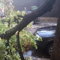На Закарпатті через негоду 30 населених пунктів залишилися без електрики