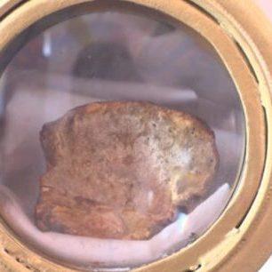 В Мексиці люди поклоняються грибу XIX століття, в якому можна розгледіти образ Ісуса Христа