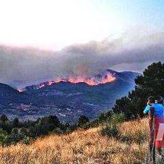 Масштабна лісова пожежа вирує у Іспанії