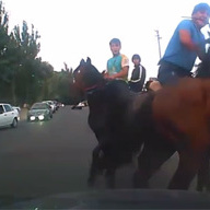 У Казахстані на проїжджій частині джигіти на конях грали в «перетягування барана» та пошкодили автомобіль (відео)