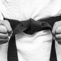 Японець відбився від ведмедя за допомогою навичок карате