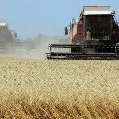 Україна працює над створенням інвестиційної платформи для агробізнесу