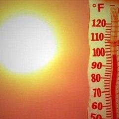 Спека не відступає: завтра на заході України буде +37