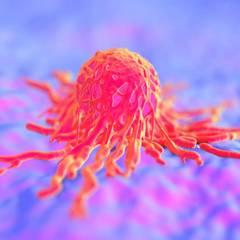 Названо спецію, яка вбиває ракові клітини
