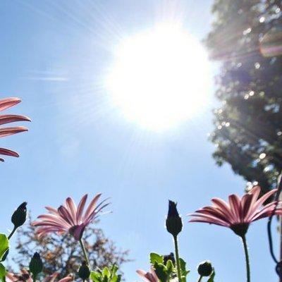 На українців 7 серпня чекає різка зміна погоди