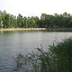 Двоє друзів вирішили переплисти Левандівське озеро, до берега доплив лише один