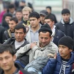 Австрія посилює контроль на кордонах через нелегальних мігрантів