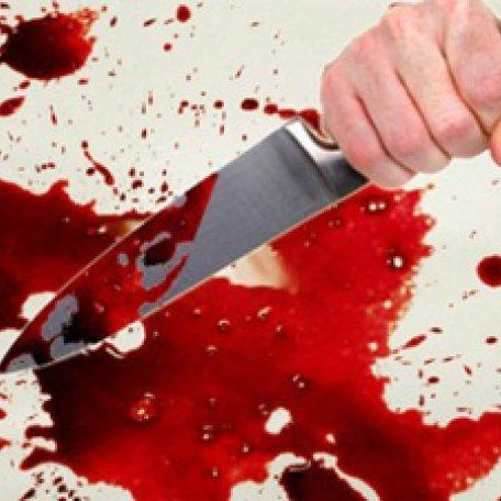 Моторошне вбивство із 30-ма ножовими пораненнями: 16-річний хлопець вбив дядька і закопав у лісосмузі