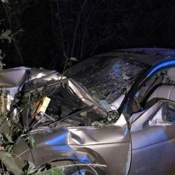 «Ягуар» на шаленій швидкості влетів у дерево під Києвом: дивом ніхто не загинув