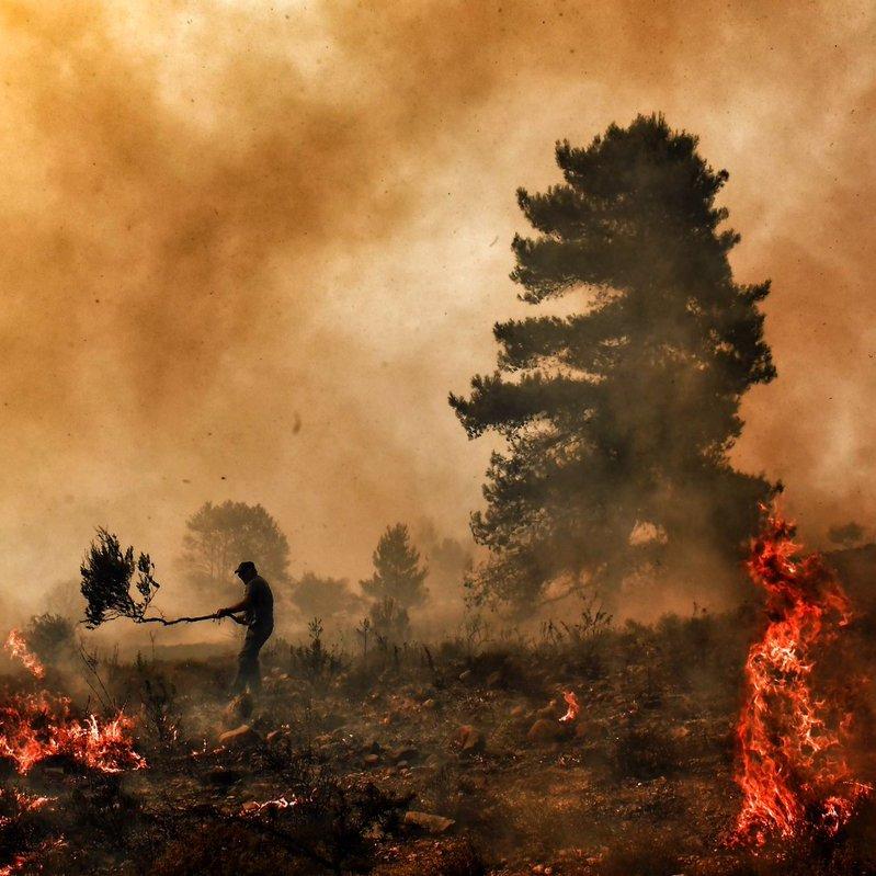 Греція звернулася до ЄС по допомогу в боротьбі з пожежами (фото)
