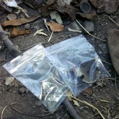 В Івано-Франківську виявили масове поховання жертв політрепресій (фото)