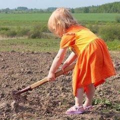 Дитяча праця: за порушення законодавства батьків відправлятимуть у в'язницю