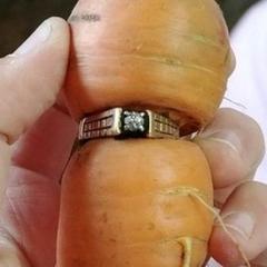 Через 13 років загублений перстень з діамантом знайшли у викопаній морквині