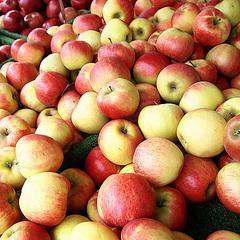 Яблучний спас «на носі»: яка вартість яблук у різних регіонах України