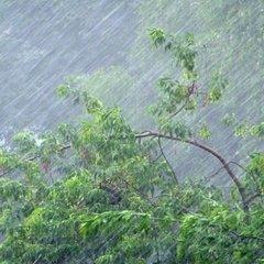 В Україні сьогодні похолодає, у багатьох областях пройдуть дощі з грозами (карта)