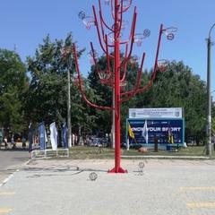 В Одесі встановили восьмиметрове «Древо спорту» (фото)