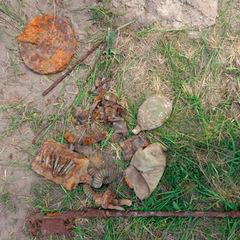 Житель Житомирщини шукав старовинні речі, а знайшов рештки солдата (фото)
