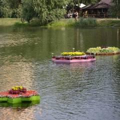 У Києві розпочався Фестиваль плаваючих клумб (фото)