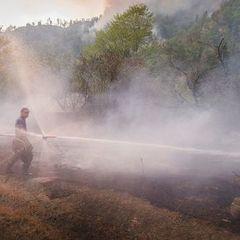 У МВС Грузії заявили, що пожежу в Боржомській ущелині ліквідовано