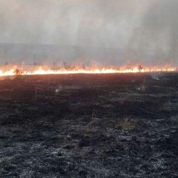 Марчук про пожежі уздовж лінії розмежування: Сепари стріляють освітлювальними ракетами прямим наведенням по полях і населених пунктах