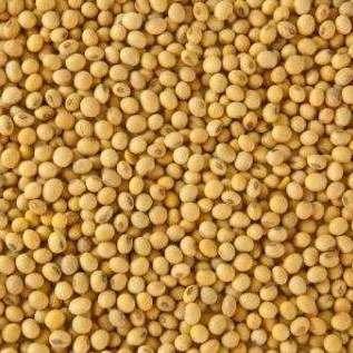На Херсонщині конкуренти побилися через врожай сої, є травмовані